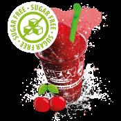 Zero Sugar Syrup (5)